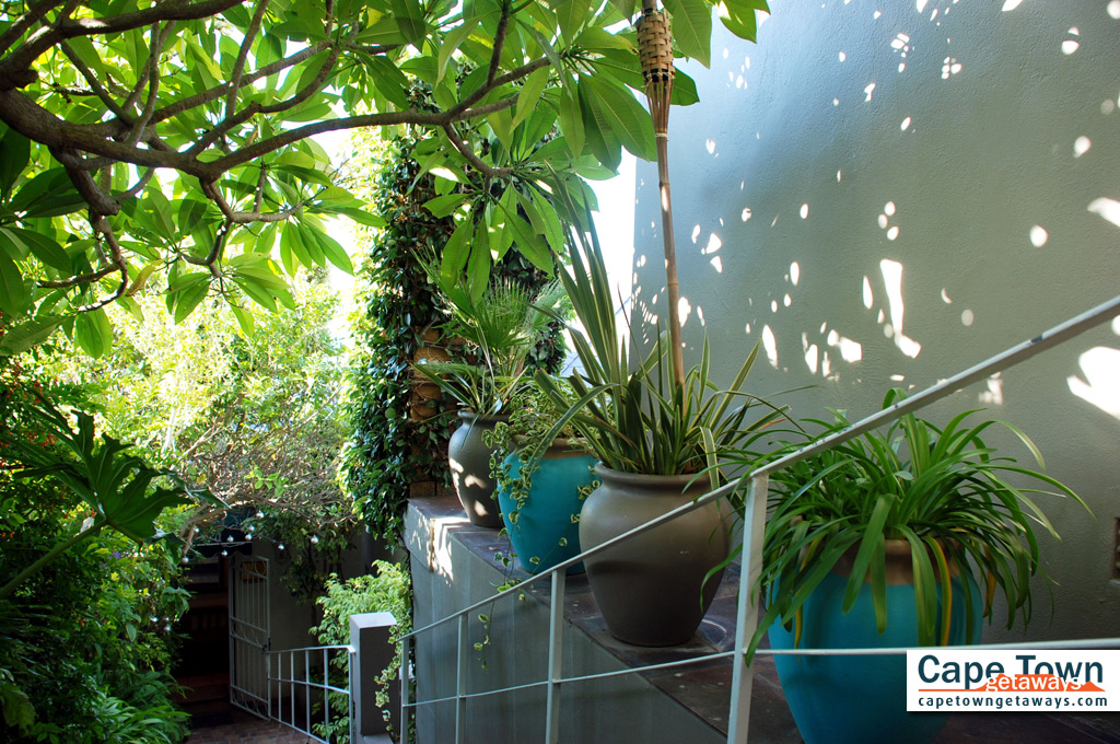 Entrance through the Garden at Bluegum Hill Cape Town Sea View Guesthouse