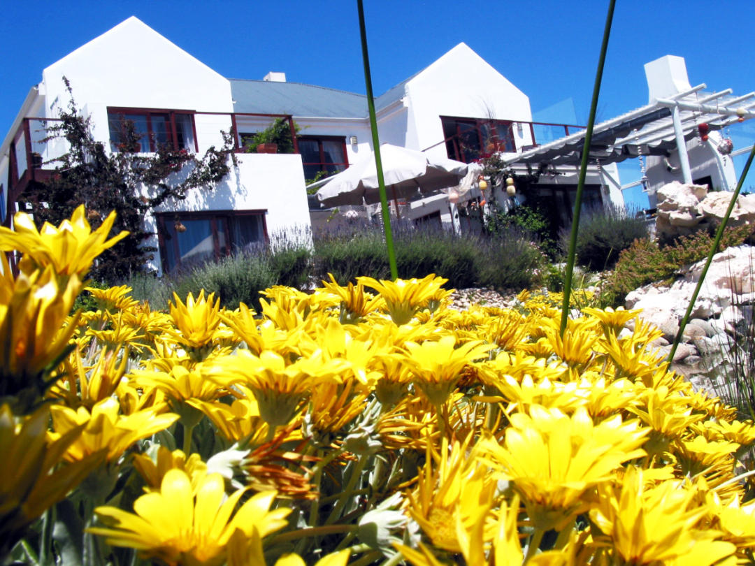 Farr Out Guesthouse Paternoster