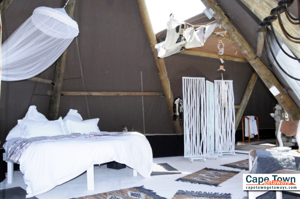 Farr Out Guesthouse Paternoster wigwam rising moon bed