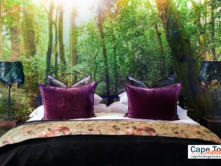 Boutique Hotel Knysna Forest Suite Bed