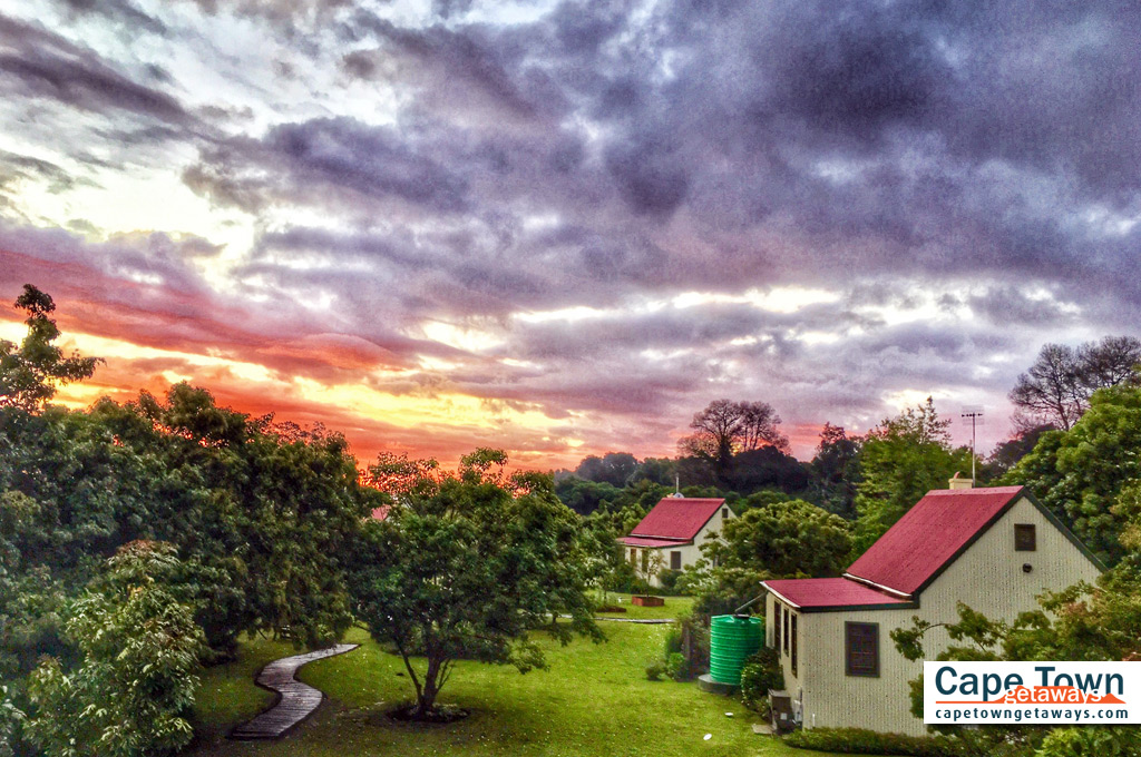 Self-Catering Cottages Knysna Dramatic Forest Edge Sunset