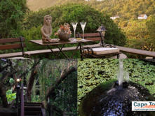 Treetops Wilderness Guest Lodge