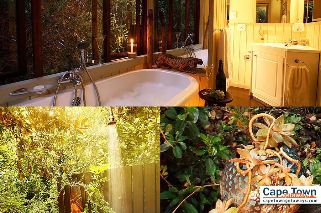 Treetops bathroom Wilderness Guest Lodge