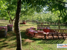 Relax in this beautiful garden with arm chairs and space to stack your goodies